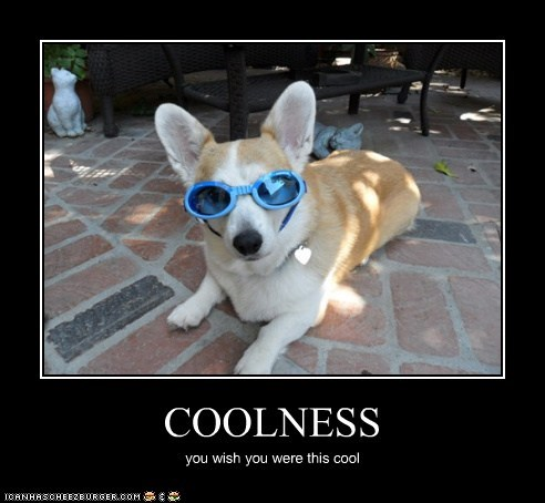 COOLNESS you wish you were this cool