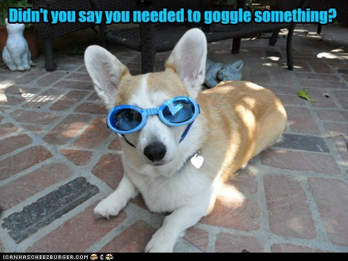 Didn't you say you needed to goggle something?