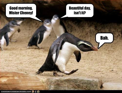 angry bah Dick Cheney grumpy penguin scrooge - 6506857216