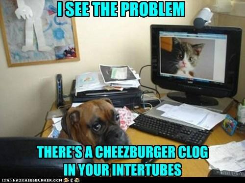 Cheezburger Image 6506871040