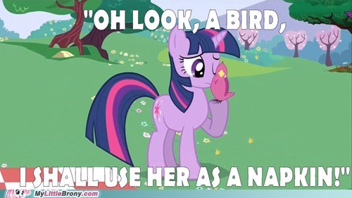 bird napkin the internets twilight sparkle - 6506958592