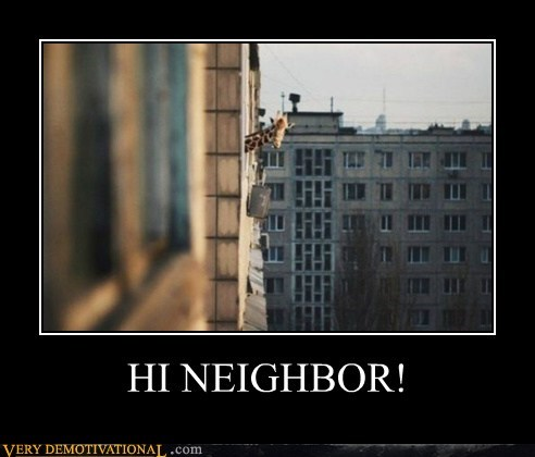 apartment giraffes hilarious neighbor - 6507083520