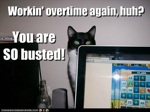 busted game work captions overtime Cats - 6507113472