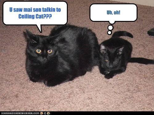U saw mai son talkin to Ceiling Cat??? Uh, oh!