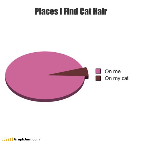 Cats hair Pie Chart shedding