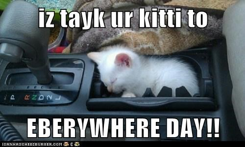 captions car Cats cupholder drive kitten take your child to work d take your child to work day - 6507605248