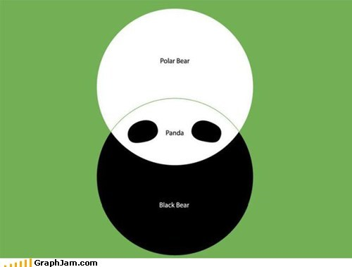 bears,black and while,classic,panda,polar bear,venn diagram