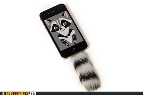 iphone,iphone accessories,raccoon,tail