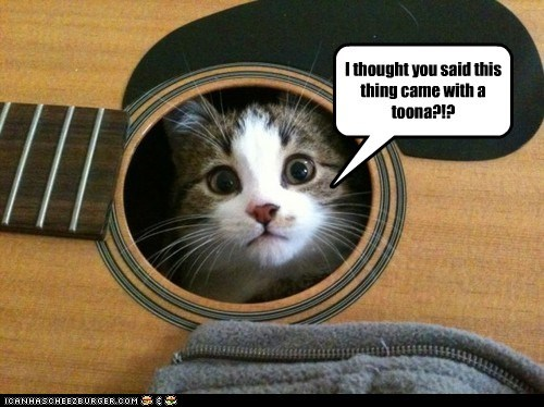 captions Cats guitar pun tuna tuner - 6507986944