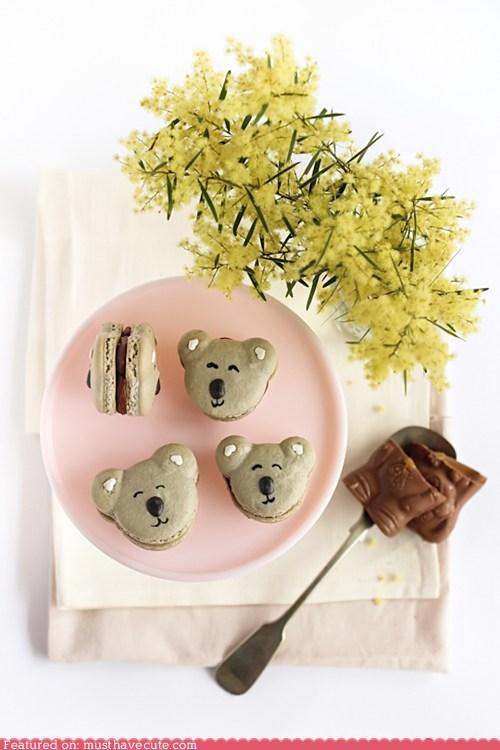 cookies epicute koalas macarons
