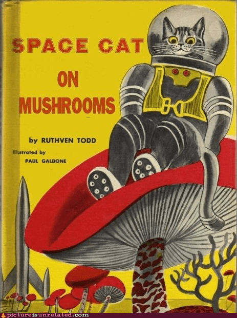 book,Mushrooms,Nyan Cat,space,wtf