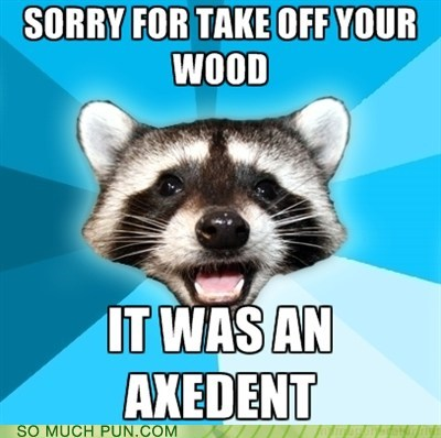 accident,axe,Lame Pun Coon,prefix