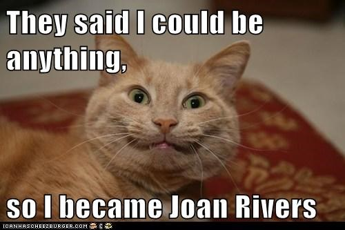 captions,Cats,celeb,joan rivers,they said i