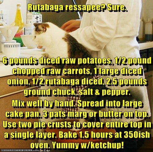 Cheezburger Image 6509406976