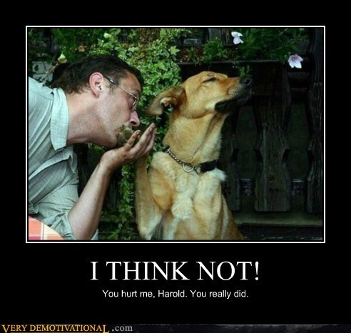 dogs i think not KISS wtf - 6509910016