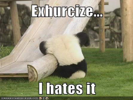 exercise,fall,fitness,hate,panda,slide