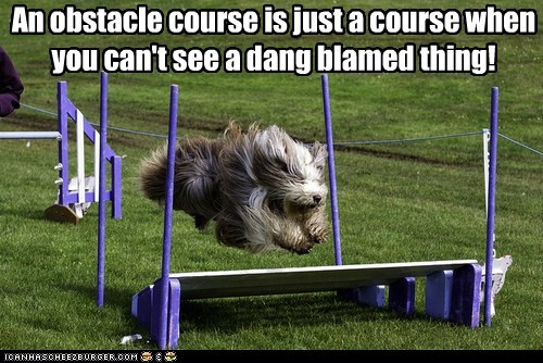 An obstacle course is just a course when you can't see a dang blamed thing!