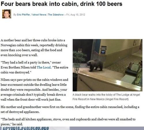 bears,bears drink 100 beers,crunk critters,Norway