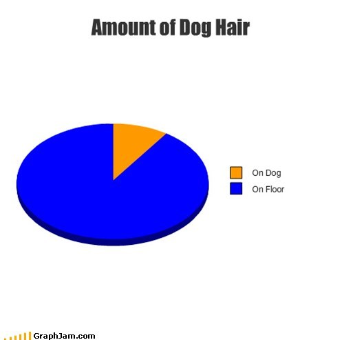 dog hair,pets,Pie Chart,shedding