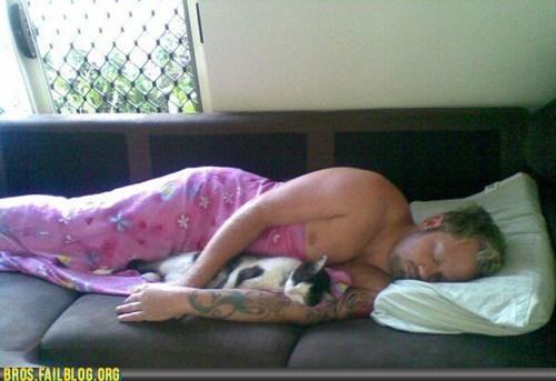 animals,cat,Cats,manimals,nap,sleeping