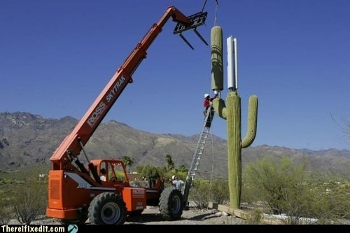 arizona,cactus,cell phone tower,saguaro cactus