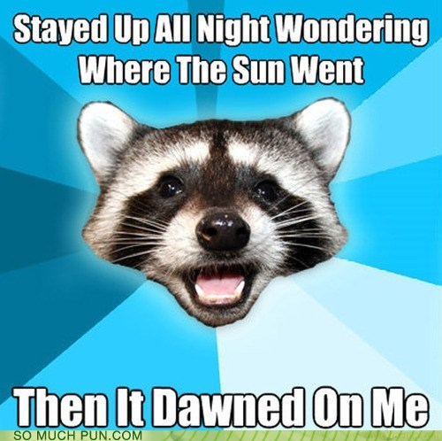 dawn dawned double meaning Lame Pun Coon literalism sun - 6511257856
