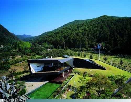 grass,green,hillside,modern,plants,roof
