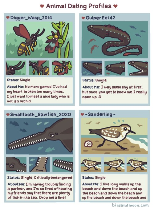 nature science animals web comics - 6511621
