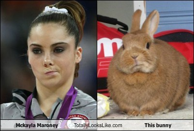 animal,bunny,funny,London 2012,mckayla maroney,olympics,TLL