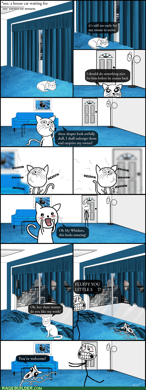 cat logic,Cats,design,omg run,pets