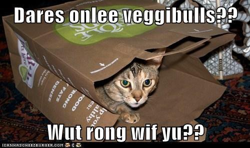 Cheezburger Image 6512750848