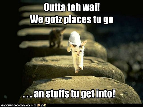 Outta teh wai! We gotz places tu go . . . an stuffs tu get into!