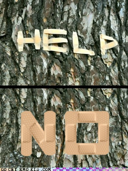 bandaids,help,no,tree,weird kid