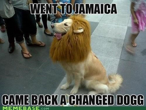 jamaica,snoop dogg,snoop lion