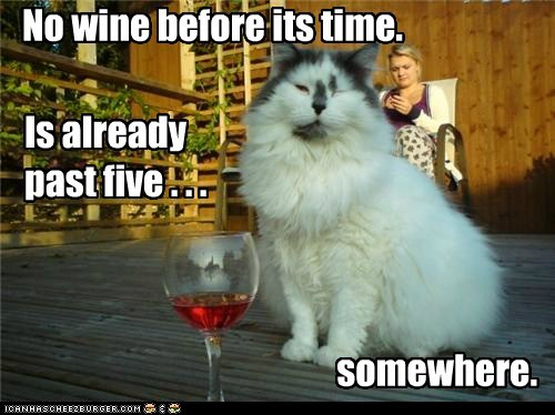 captions,Cats,five,impatient,patience,wait,wine