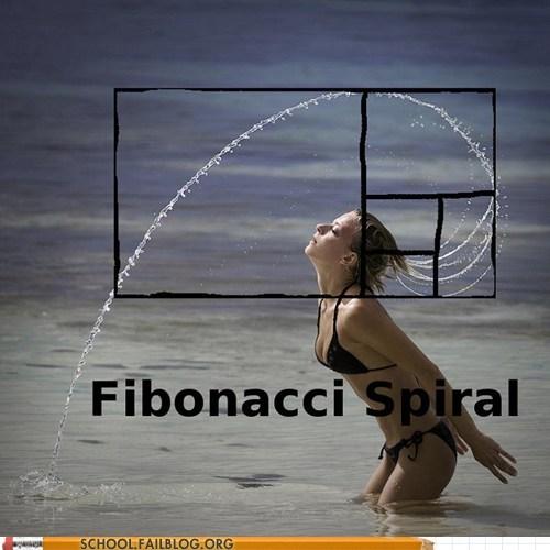 fibonacci spiral geometry hair flip math - 6513631232