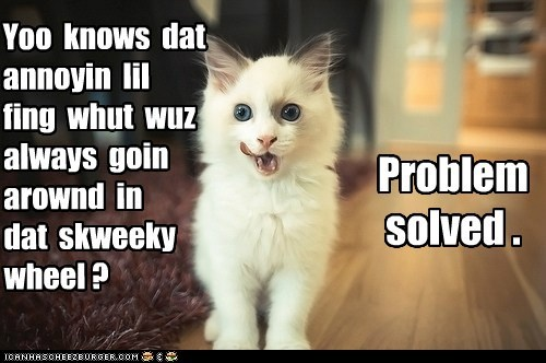 captions Cats eat hamster nom problem problem solved wheel - 6513730048