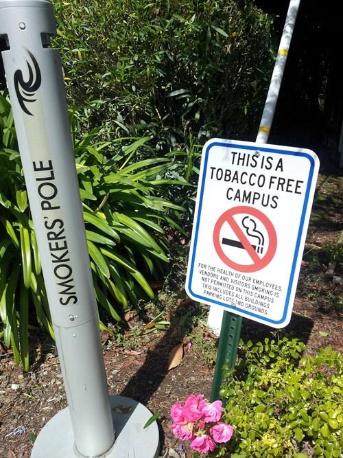 To Smoke or Not to Smoke
