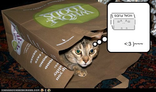 bag captions Cats mouse plan plot Unicode whole foods