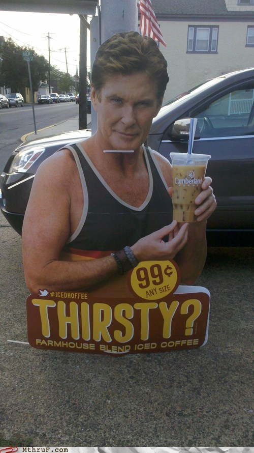 coffee,david hasselhoff,iced hoffee