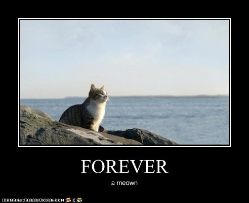 FOREVER a meown