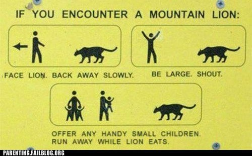 funny signs mountain lion survival - 6514077952