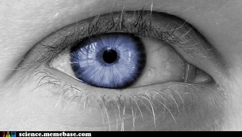 artificial biotech medicine retina - 6514179328