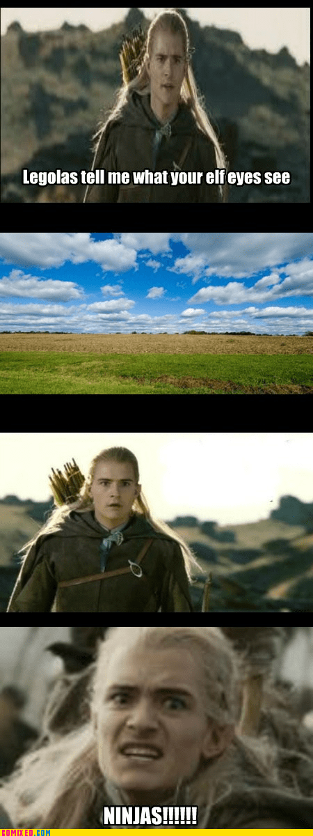 legolas Lord of the Rings Movie ninja what do your elf eyes see