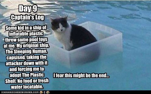 Day 9 Captain's Log Some kid in a ship of inflatable plastic threw some pool toys at me. My original ship, The Sleeping Human, capsised, taking the attacker down with it and forcing me to adopt The Plastic Shelf. No food or fresh water locatable. I fear this might be the end...