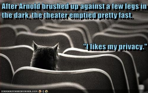 captions Cats creepy frighten legs movie theatre privacy surprise - 6515355904