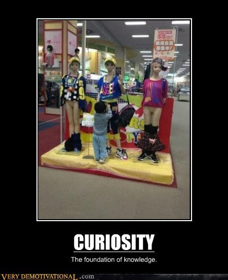 curiosity hilarious knowledge wtf - 6516008960