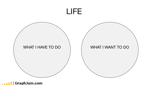fun,life,venn diagram,work