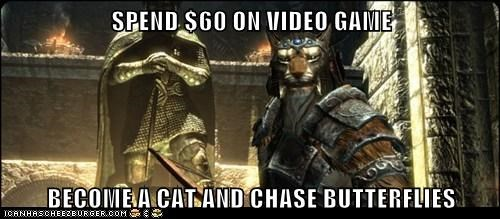 butterflies,cat,chase,expensive,Skyrim,the elder scrolls,video game