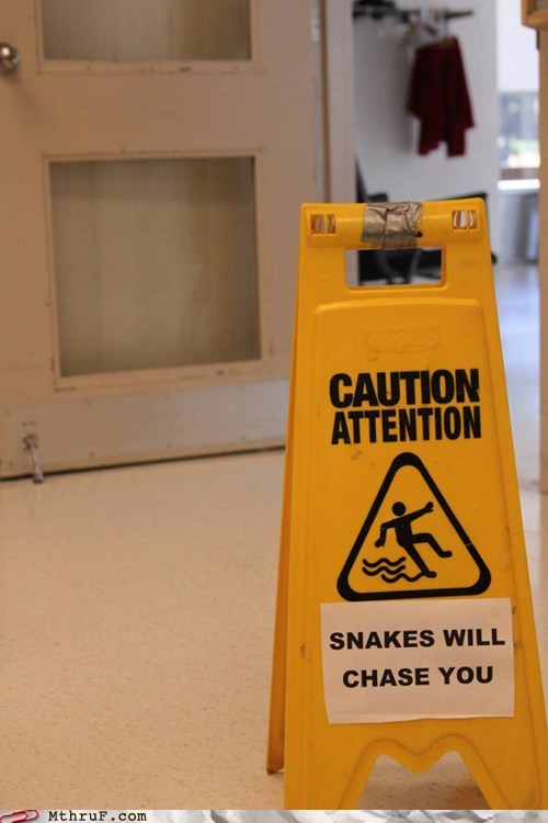 bacon,caution wet floor,snake,snakes will chase you